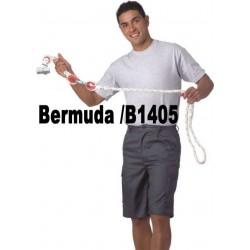 BERMUDA / B1405